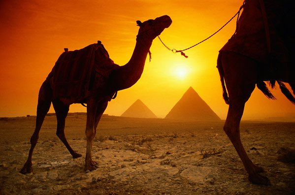 CRUCEROS EGIPTO CRUCEROS EL CAIRO CRUCEROS EGIPTO CRUECEROS FLUVIALES NILO VACACIONES EGIPTO VIAJES A EGIPTO CRUCEROS NILO TEMPLOS EGIPCIOS CRUCEROS EGIPTO CRUCEROS NILO NILE CRUISES #NiloCruises #CrucerosNilo #CrucerosEgipto #EgyptCruises #CruceroporelNilo #ViajesaEgipto #Bidaiak #Creuer #ElCairo #Luxor #AbuSimbel #Keops #Esfinge