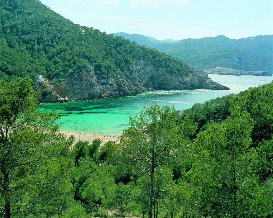 Ibiza, la isla verde